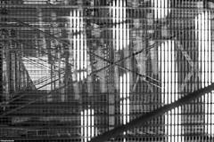 IMG_7271-1ri (kleiner nacktmull) Tags: asahi apsc architektur architecture black blackandwhite bw building camera canon dslr deutschland eos europe europa foto flickr germany grau grey gebäude hesse hessen kolle kleinernacktmull kamera lens monochrome main monochrom nacktmull manual manuell m42 objektiv photo park rhein rhine rheinmaingebiet stephankolle stephan schwarz schwarzweiss schwarzweis sw weis weiss takumar taunus white turm tower supertakumar 60d 50mm regionalpark flörsheim weilbach kiesgruben maintaunuskreis gray aussichtsturm pentax
