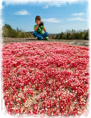 red elf orpine and the budding photographer-Edit.jpg (McMannis Photographic) Tags: 40acrerock destination travel southcarolina