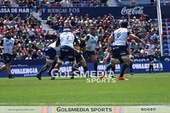 Final Copa del Rey de Rugby (paloma navarro)