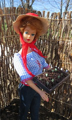 Gardening girl (Foxy Belle) Tags: garden spring outdside outdoors soil dirt compost barbie vintage bubblecut jeans hat outside work tools working country girl sparkle girls seeds seedlings tray