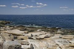 "Looking ""Down East"" (brucetopher) Tags: sea ocean rocks ledges searocks atlantic massachusettsbay sandybay blue water coast cove bay boulders rock wave waves lowtide park seacoast coastline coastal"