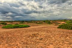 Loneliness (FabCannizzaro) Tags: desert photo canon color amazing sky cloud light nature landscape view stunning wonderful love like magic photographer