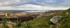 Monts d'Arrée (Claire Trefle) Tags: bretagne brittany monts darrée montagne st michel landes