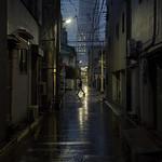 Tokyo 4388 thumbnail
