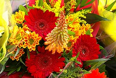 * Spring Bouquet * (argia world 1) Tags: bouquet fiori flowers macro primavera spring argiagranuzzo