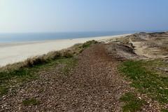 Miles of Beach and Dunes (Hythe Eye) Tags: blavand jutland jylland denmark beach sanddunes