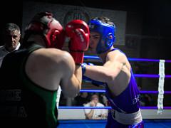 26681 - Hook (Diego Rosato) Tags: boxe boxelatina boxing pugilato ring reunion pugno punch tamron 2470mm nikon d700 rawtherapee hook gancio