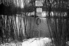 Centennial Park (KevinCollins00) Tags: 35mmfilm blackandwhite bw centennialpark fed3a ilfordfp4plus125 toronto winter kodakhc110dilutiona ontario canada