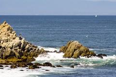 Beautiful day on Monterey Bay (nosha) Tags: