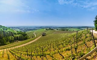 Panorama Offenburg