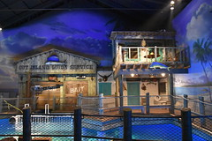 Wonders of Wildlfie National Museum and Aquarium (Adventurer Dustin Holmes) Tags: 2018 wondersofwildlife outislandguideservice springfieldmo springfieldmissouri missouri ozarks greenecounty display exhibit buildings