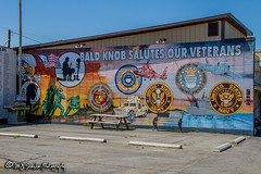 Veterans Memorial Wall | Bald Knob, Arkansas (M.J. Scanlon) Tags: 2018 airforce arkansas army baldknob canon capture coastguard color digital eos flag honor image impression landscape mjscanlon mjscanlonphotography marines may memorial mojo mural navy outdoor outdoors perspective photo photograph photographer photography picture power real salute scanlon sky super usa usaf uscg usmc usn unitedstates veterans view wall wow ©mjscanlon ©mjscanlonphotography