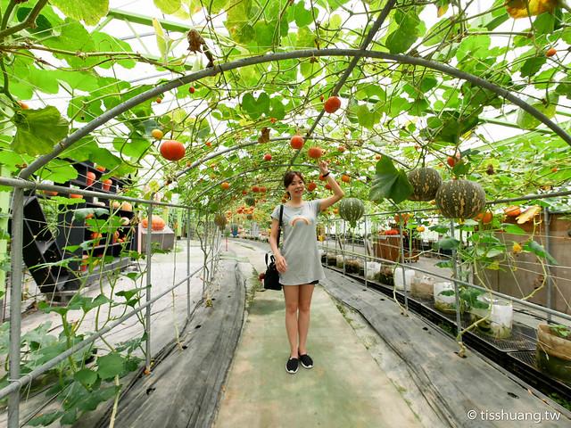 旺山休閒農場-1270055