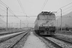 domo II set 64 #18 (train_spotting) Tags: beuracardezza domoii tigre tigrone e652156 trenitaliacargo trenitalia ticargo divisionecargo mir merciitaliarail nikond7100