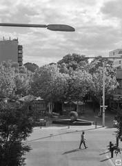 street (Pavel Vrzala) Tags: australia australie canberra 2015 2014 olympus pen ft penft blackandwhite bw 35mm halfframe film act city civic citycentre analog analogphotography blackwhite blackandwhitephoto filmphotography kodak kodaktmax100