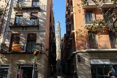 Novembre_0083 (Joanbrebo) Tags: barcelona catalunya españa es laribera canoneos80d eosd efs1018mmf4556isstm autofocus