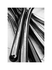 A masterpiece of the 20th c. 8 (BLANCA GOMEZ) Tags: bilbao spain museum guggenheimmuseum museo arquitectura architecture building masterpiece artgallery arts workofart frankgehry thomaskrens bw blackwhite deconstructivism tulips jeffkoons glass limestone titanium