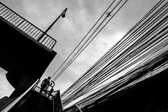 Bangkok (tomabenz) Tags: lines noiretblanc asia bnw bw contrast bangkok street photography noir et blanc people monochrome urbanexplorer zeiss human geometry black white sony a7rm2 urban streetview blackandwhite humaningeometry sonya7rm2 streetphotography