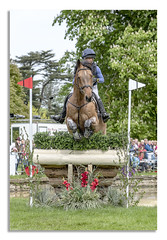 Chatsworth Horse Trails 2018 (johnhjic) Tags: johnhjic nikon nikond850 horse house jump jumps fence fences trees tree flags flag water rider derbyshire uk england horses fance eventing event threeday 3day 3 day