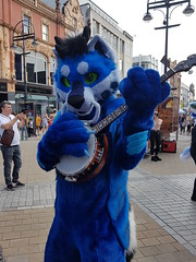 """Leeds furmeet May2018 • <a style=""""font-size:0.8em;"""" href=""""http://www.flickr.com/photos/97271265@N08/41528713734/"""" target=""""_blank"""">View on Flickr</a>"""