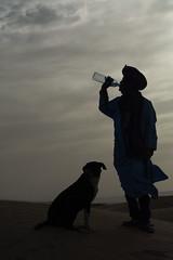 Beduino (nnorpa) Tags: morocco marrakech desert sahara camel essaouira zagora sand fish blu cammelli marocco cammello turbant street sunrise sunset sunlight light lights orange colours juice old men bikes lamb souk kids