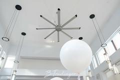 DSCF3809-2 (B Random) Tags: 40th architech balloon birthday fan modern photoshoot pleasing simple white window