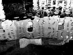 P1010284_edited-1 (gpaolini50) Tags: riflessi riflessioni emotive esplora explore explored emozioni explora photoaday photography photographis photographic photo phothograpia