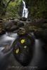 Una de las maravillas de Navarra. (Fotografias Unai Larraya) Tags: cascadas cascadadexorroxin paisajes navarra otoño largaexposición agua río ngc bosque hojas