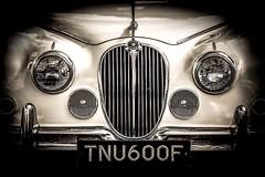Harry... (RichardK2018) Tags: 34litre markeatonpark motorshow blackandwhite monochrome auto jaguar zuiko75mmf18 olympuspenf