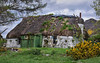 The Holiday home wasn't quite what we were expecting.. (Harleynik Rides Again.) Tags: ruin croft house dwelling abandoned thatch scotland highlands lochduich harleynikridesagain