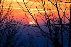 Sunrise lights (Dax Borghi) Tags: cloud ef70200mm romanticism romantic 70200 eos canon sole colore luci luce alba albero arancio natura italia italy cimone sestola nature orange silhouette silhouettes trees tree light colours colour sun sunrise