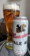 mmmm....beer (jmaxtours) Tags: mmmmbeer beer mooseheadpaleale moosehead paleale mooseheadbreweries saintjohnnewbrunswick nb stjohn saintjohn ale