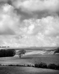 South Downs (Graham Hodgetts) Tags: blackandwhite brighton countryside england farmland fujifilm fujinon landscape monochrome ramble rural southdowns style summer thegreatoutdoors thesouthofengland walk rollinghills sussex streat unitedkingdom gb