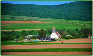 Spring landscape in Transylvania