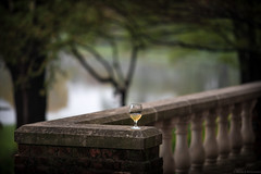 Forget Something? (Fret Spider) Tags: wine glass gardens water tree bokeh bokehdelicious pillar counter outdoor nature reflection sonnarapo1352ze sonnar1352ze aposonnart2135 ze architecture beverage libation happy wife view manuallens canoneos5dmarkiv whitewine grape vino vintage