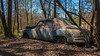 For A Lonely Soul (Wayne Stadler Photography) Tags: abandoned preserved junkyard georgia classic automotive derelict overgrown vehiclesrust rusty retro vintage oldcarcity rustographer rustography white