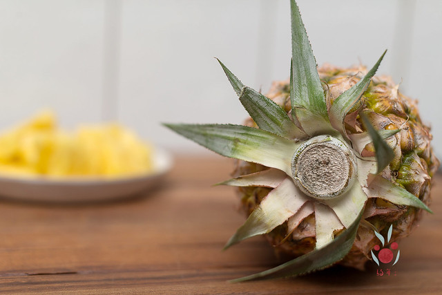 鳳梨、竹筍通通吃酵素長大,無農藥耕種 三竹居士 (2)