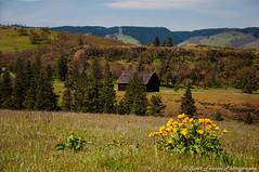 Barn living (F-StopScott) Tags: barn river gorge oregon hood