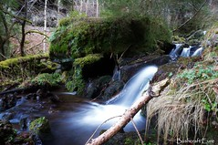 cascade de Chambeuil (Cantal) (Bushcraft.Eure) Tags: waterfall cascade pont eau riviere moss mousse automne autumn longexposure water auvergne cantal