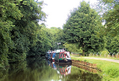 A canopy of Green. (Country Girl 76) Tags: gargrave leeds liverpool canal water narrow boats reflections trees tranquility towpath north yorkshire