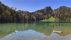 Alatsee (Robbi Metz) Tags: deutschland germany bayern bavaria alpen landscape mountains lake water forest trees alatsee colors canoneos
