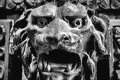 And You Ain't Got the Courage to Leave (Thomas Hawk) Tags: america citymuseum citymuseumstlouis missouri stlouis usa unitedstates unitedstatesofamerica lion sculpture us fav10