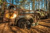 Over The Edge (Wayne Stadler Photography) Tags: abandoned preserved junkyard georgia classic automotive derelict overgrown vehiclesrust rusty retro vintage oldcarcity rustographer rustography white
