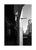 (billbostonmass) Tags: silvermax 129silvermax1100min68f film fm2n 40mm ultron epson v800 boston massachusetts adox