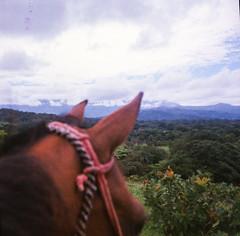 Boquete, Panama (stefaniesmith1) Tags: horseback panama boquete mountainview film mediumformat twinlens colourfilm 35mm travel