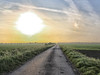w 2 (BENPAB) Tags: stoney creek cherry cob sands humber east yorkshire southern holderness estuary inlet sunset