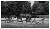 Heavy Showers, No Takers 116/365 (Explored, thanks) (John Penberthy LRPS) Tags: garden d90 3652018 day116365 nikon 26apr18 nationaltrust 365the2018edition wind hamhouse shower flowersandplants rain johnpenberthy explore explored weather 2018th70 mono monochrome blackandwhite