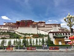 Potala Palace - Lhasa, Tibet (cattan2011) Tags: religion buddhism 拉萨 西藏 streetart streetpicture streetphoto streetphotography landscapephotography landscape culture traveltuesday travelphotography travelbloggers travel temple monastery tibet lhasa potalapalace