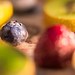 Colourful Fruits - Blueberry Edition
