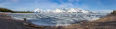 Jackson Lake, Grand Teton National Park, Wyoming. (scepdoll) Tags: findyourpark 399 colterbay grandtetonnationalpark grizzlybears jackson jacksonlake jennylake oxbowbend stringlake tetons wyoming bearcubs bears bird frozen icefishing landscape mountains raven sunrise